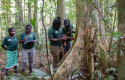 @EU/GCCA+, 2020 Forest Conversation Programme in Suriname, Harvey Lisse